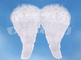 Krídla anjela biele