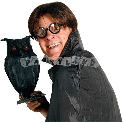 Párty okuliare Harry Potter